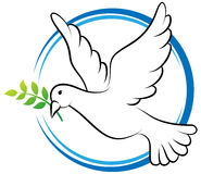 Dove. Vector illustration of peace dove on white background royalty free illustration