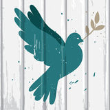 Dove on wood background Royalty Free Stock Photos