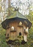 Dovecote в древесинах стоковые изображения rf