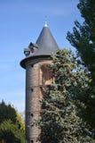 Dovecote сада акклимации в Париже стоковое изображение