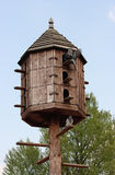 Dovecote. Wooden dovecote with several pigeons Stock Image