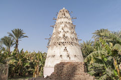 Dovecote on banana island Royalty Free Stock Image