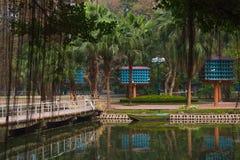 Dovecote ogrodowy miasto Hanoi Zdjęcia Stock
