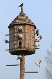 Dovecote Royalty Free Stock Photos