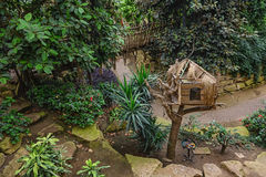 Dovecote for wild pigeons in the tropical pavilion. Royalty Free Stock Photo