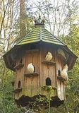 A Dovecote in the Woods royalty free stock images