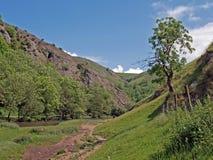 Dovedale in Derbyshire stockbild