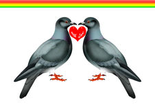 Doves. Two love birds catching the love symbol of hearten with clipping path Stock Image