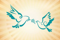 Doves on the background of sunlight. Peace Dove with olive branch. Vector Illustration. EPS 10. Christian dove, symbols of peace. Sun rays. Vector template for vector illustration