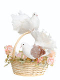 Doves and a basket. Two white doves on a wedding basket Royalty Free Stock Image