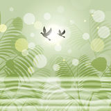 Doves Bokeh Indicates Freedom Environment And Green Royalty Free Stock Photo