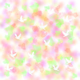 Doves and daisies Royalty Free Stock Images