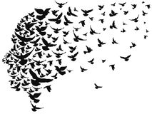 Doves flying away with human head. Isolated doves flying away with human head from white background Royalty Free Stock Images
