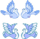 Doves Royalty Free Stock Images