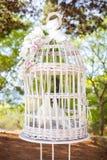 Doves inside the jailbird Stock Photo