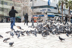 Doves on Konak Square in old part of Izmir city Stock Photos