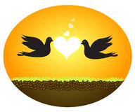 Doves In Love Stock Photography