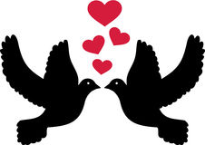 Doves in love Royalty Free Stock Photography