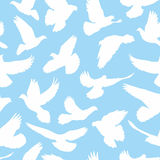 Doves pattern seamless Royalty Free Stock Photo