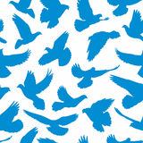 Doves pattern seamless Royalty Free Stock Photography