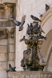 Doves on a statue Royalty Free Stock Photos