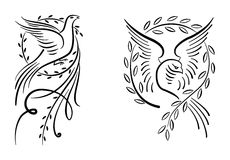 Doves. White dove with olive branch on white background Royalty Free Stock Photos
