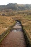 Dovestone waterflow royaltyfria bilder