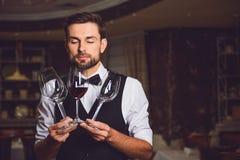 Dovete inalare la specie di vino rosso Fotografie Stock