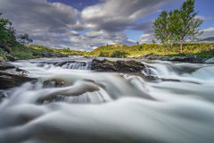 Dovrefjell, early morning in Norway Royalty Free Stock Photos