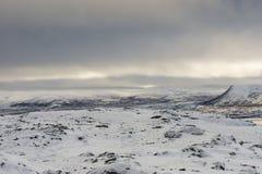 Dovrefjell Norge landskap Royaltyfria Bilder