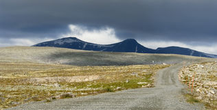 dovrefjell park narodowy Obrazy Royalty Free
