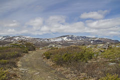 In Dovrefjell Royalty Free Stock Photos