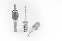 Dowel pin or wall plugs and screws for gypsum board Royalty Free Stock Image
