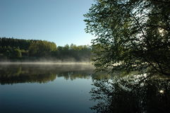 At down. Mist on the lake, fall of mist Royalty Free Stock Photo