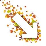 Down Arrow Autumn Foliage Royalty Free Stock Photography