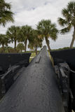 Down the Barrel. Looking down heavy rifle / canon with palm trees Royalty Free Stock Photography