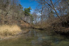 Down the creek. Down the small creek in Starved Rock, Illinois on a early Spring afternoon Stock Photography