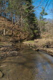 Down the creek. Down the small creek in Starved Rock, Illinois on a early Spring afternoon Stock Images