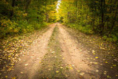 Down The Dirt Road Royalty Free Stock Image