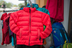 Down jacket for sell in clothing shop Stock Image