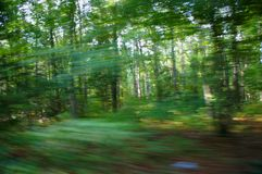 Down the road. Blurred trees on the side of the road from moving vehicle Stock Image