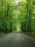 Down the road. Dirt road.. quebec ,canada Royalty Free Stock Image