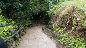 Down the stairs. Iao Valley stairs Stock Photography
