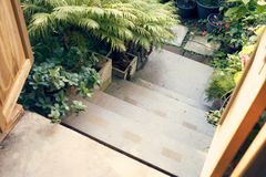 Down the stairs in vintage style, there are low shrub trees adorn the two sides of the path. It is popular in home decor and moder. N home gardening with limited stock image