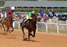 Down to the wire. Horses racing towards the finish line Stock Photo