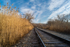Down the tracks. Stock Images