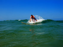 Down The Wave. A Florida teenager surfing Royalty Free Stock Image
