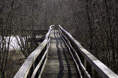 Down the Winter Boardwalk. A lonely boardwalk in winter`s release Stock Images