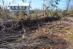Downed Tree and debris in front of boarded up house stock images