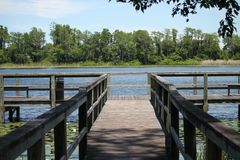 Downey公园湖和船坞在奥兰多 免版税库存照片